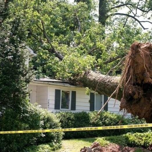 Storm Wind Damage Repair Services in Thornton, Colorado